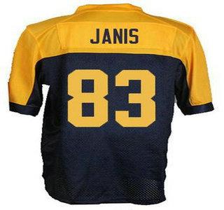 82 Richard Rodgers Elite Gold Rush NFL Jersey Mens Green Bay Packers 83 nfl  jerseys ... cd6c7170e